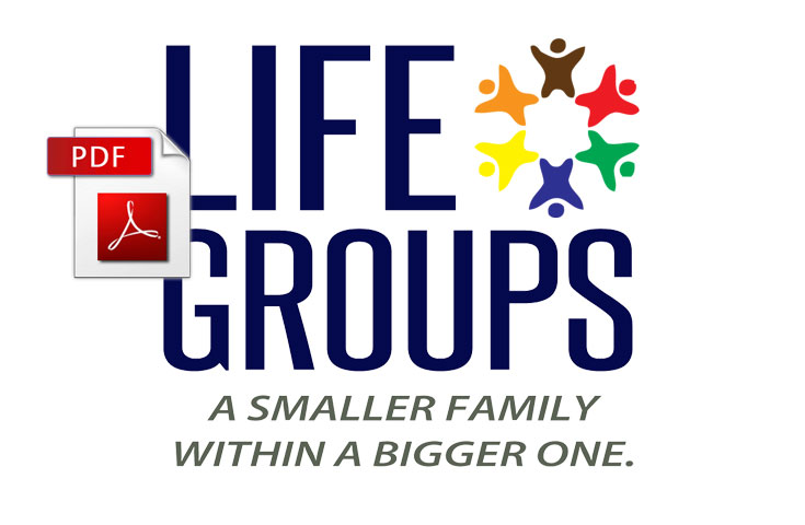 Life Group Evaluation